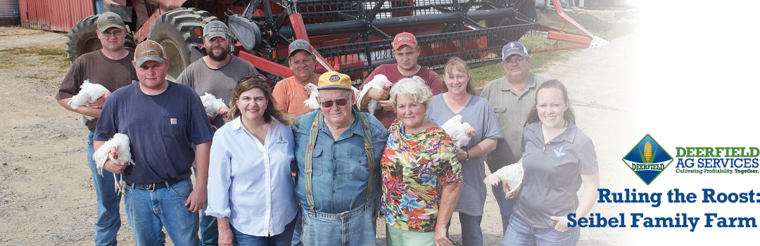 Ruling The Roost: Seibel Farms